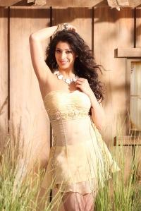 Lakshmi-Rai-Latest-Photoshoot-2